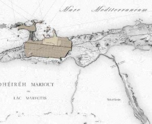 L'orientamento astronomico della città di Alessandria