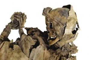 Le Mummie di Roccapelago (XVI-XVIII sec.): vita e morte di una piccola comunità dell'Appennino modenese